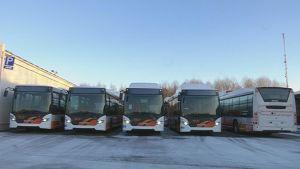 Biokaasubusseja rivissä