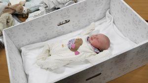 Vauva laatikossa.