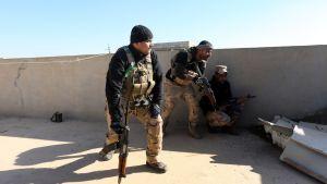 Kolme irakilaista sotilasta suojautuu talon katolla. Etualalla olevalla miehellä on musta pipo, maastokuvioidut haalarit, tumma pusakka ja varustevyö. Oikeassa kädessään hänellä on rynnäkkökivääri, jonka piippu osoittaa kattoa kohti. Kaksi muuta miestä on muurin suojassa, toinen hieman kumartuneena, toinen korkeassa polviasennossa. Heilläkin on käsissään rynnäkkökiväärit.