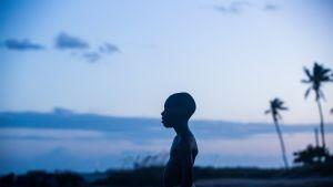 Moonlight-elokuvan pressikuva.