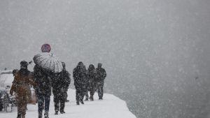 Ihmisiä lumisateessa.