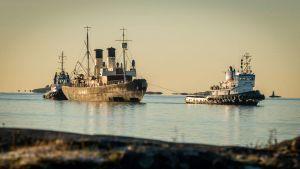 Vanhaa jäänmurtajaa Tarmoa hinataan merellä