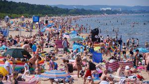 Gdanskin uimaranta täynnä väkeä kesällä 2015.