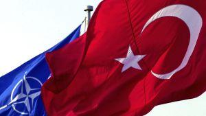 Turkin ja Naton liput.