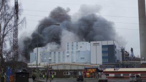 Huntsman palo suuri palo Meri-Pori Pori