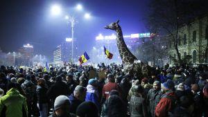 Hallituksen vastaisia mielenosoittajia Bukarestissa, Romaniassa, 2. helmikuuta.