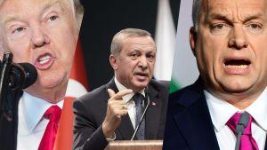Yhdysvaltain presidentti Donald Trump, Turkin presidentti Recep Tayyip Erdoğan ja ja Unkarin pääministeri Viktor Orban.