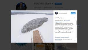 Kuvakaappaus Instagramista, jossa auki Leonardo DiCaprion tekemä päivitys.