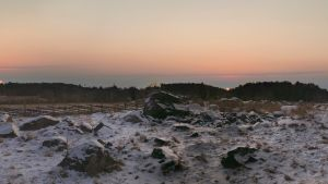 Luminen maasto, jonka taustalla olevan metsikön taakse on kuvattu Aurinko kahtena eri päivänä.