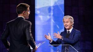 Hollannin pääministeri, oikeistoliberaalipuolue VVD:n johtaja Mark Rutte selin kameraan, kuvan vasemmalla puolella, ja Vapauspuolueen johtaja, harmaatukkainen Geert Wilders oikealla, kasvot kameraan päin, väittelevät tv-studiossa.