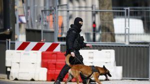 Poliisi koiransa kanssa partioi IMF:n Pariisin toimiston ulkopuolella kirjepommin räjähdettyä 16.3.2017