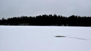 Uveavanto näkyy tummana kohtana jäässä.
