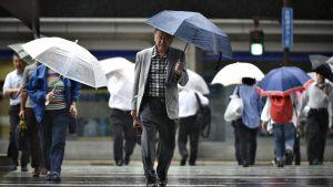 Jalankulkijoita ylittämässä suojatietä sateessa.