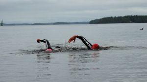 triathlonkisat