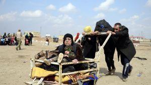 Irakilainen perhe työntää vanhusta ja lasta kärryillä siirtyessään Mosulissa uuteen paikkaan.