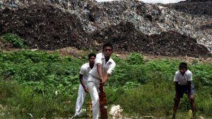 Kolonnawan jätevuori romahti myös vuonna 2012, jolloin yli 50 taloa jäi jätemassan alle rankkasateiden seurauksena. Kuvassa etualalla valkoisiin pukeutuneet nuoret pojat pelaavat krikettiä. Taustalla näkyy karmaiseva, haiseva jätevuori.