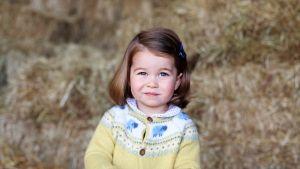 Charlotte keltaisessa villapaidassa, taustalla heinäpaaluja.