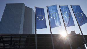 EU -liput liehuvat keskuspankin edustalla Frankfurtissa.