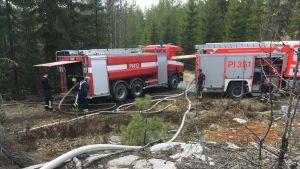 Paloautoja metsäpaloa sammuttamassa
