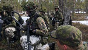 Maavoimien sotaharjoitus Army North 17, Rovajärvi