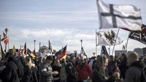 Mielenosoittajia lippuineen.