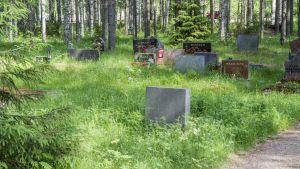 Kainuun vapaa-ajattelijoiden hautausmaan hautoja