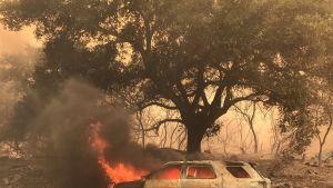 Sheriffin auto palaa tien vieressä Santa  Barbarassa lauantaina 8. heinäkuuta 2017. Sheriffi itse on kunnossa, piirikunnasta kerrottiin.