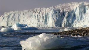 Hansbreenin jäätikkö Huippuvuorilla.