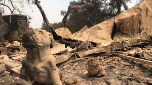 Kalifornian maastopalojen tuhoja Santa Barbarassa 10. heinäkuuta.