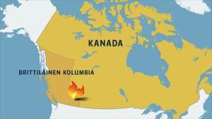 Kanadan kartta.