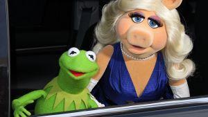 Kermit ja Miss Piggy Muppets Most Wanted -elokuvan ensi-illassa Hollywoodissa 11. maaliskuuta 2014.