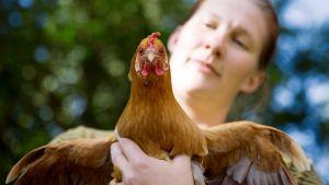 Mikaela Sundman pitelee kanaa käsissään.