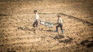 Kaksi miestä kuivalla pellolla.