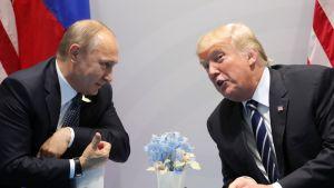 Putin ja Trump nojautuvat toisiaan kohti pöydän yli. Pöydällä on kukkia maljakossa. Trump puhuu, Putin näyttää peukaloa.