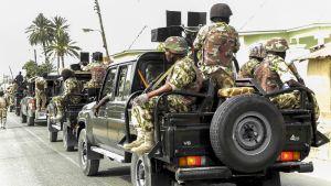 Nigerian armeijan aseistettuja sotilaita istuu maastoautojen lavoilla.
