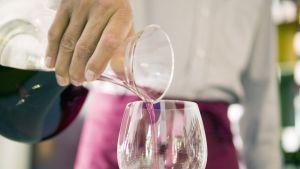 tarjoilija kaataa viiniä lasiin