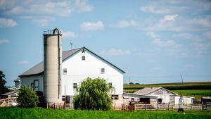 Maatalous on keskeinen elinkeino Lancasterin piirikunnassa.