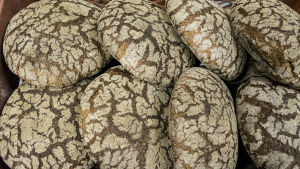 Puu-uunileipiä