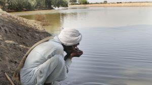 Mies juo saastunutta vettä maaliskuussa 2013 Bahawalpurissa, Pakistanissa.