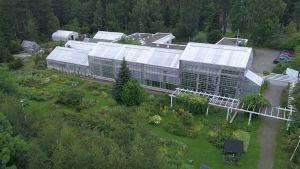 Botanian kasvihuoneet ja puutarhaa.