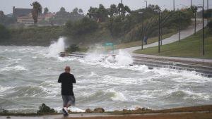 Aallot löivät rajusti rantaan Corpus Christin kaupungissa Harvey-hurrikaanin lähestyessä Texasin rannikkoa 25. elokuuta.