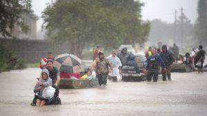Ihmisiä evakuoitiin kodeistaan Harveyn aiheuttamien tulvien jäljiltä Houstonissa Texasissa 28. elokuuta.