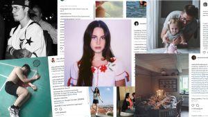 Kollaasi Instagram-kuvista otetuista kuvakaappauksista