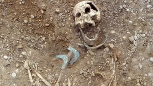 Luuranko osittain esiin kaivettuna. Käsivarren luun päällä on kaksi pronssikorua.