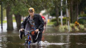 Mies työnsi pyöräänsä tulvavedessä Jacksonvillessa, Floridassa 11. syyskuuta.