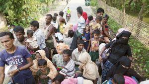 Rohingya-muslimit pakenemassa Myanmarista naapurimaahan Bangladeshiin.