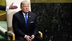 Donald Trump ohjataan puhujakorokkeelle YK:n päämajassa New Yorkissa.
