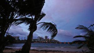 Myrskyisä rantaviiva.