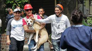 Vapaaehtoisia pelastajia koiran kanssa.