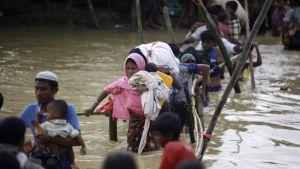 Rohingya-muslimeja ylittämässä jokea.